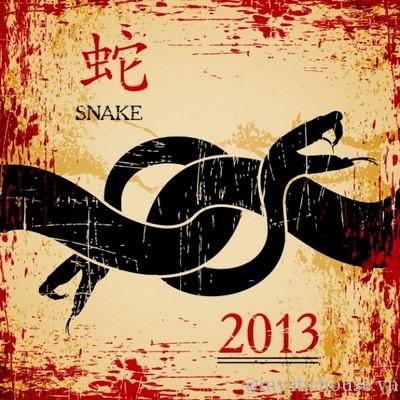 trải bài tarot năm mới 2013