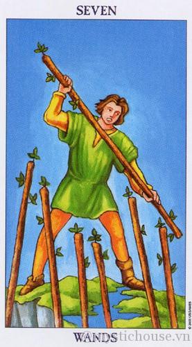 cảm nhận lá bài tarot seven of wands