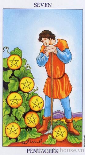 cảm nhận lá bài tarot seven of Pentacles