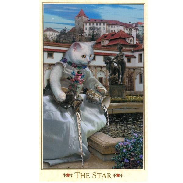 Baroque-Bohemian-Cats-Tarot-5