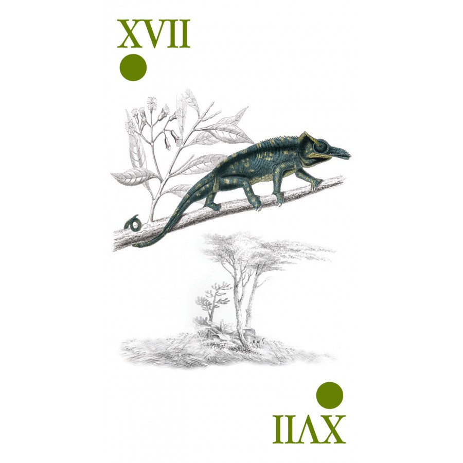 Reincarnation Tarot 10