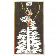 Wild-Unknown-Tarot-2