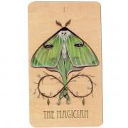 Wooden-Tarot-4