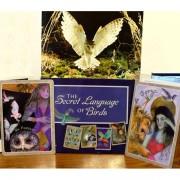Secret Language of Birds Tarot 9