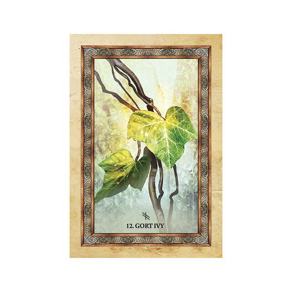 Celtic-Tree-Oracle-7