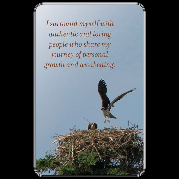 My-Daily-Affirmation-Cards-3-600×600