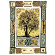 Celtic-Tree-Oracle-A-System-of-Divination-5