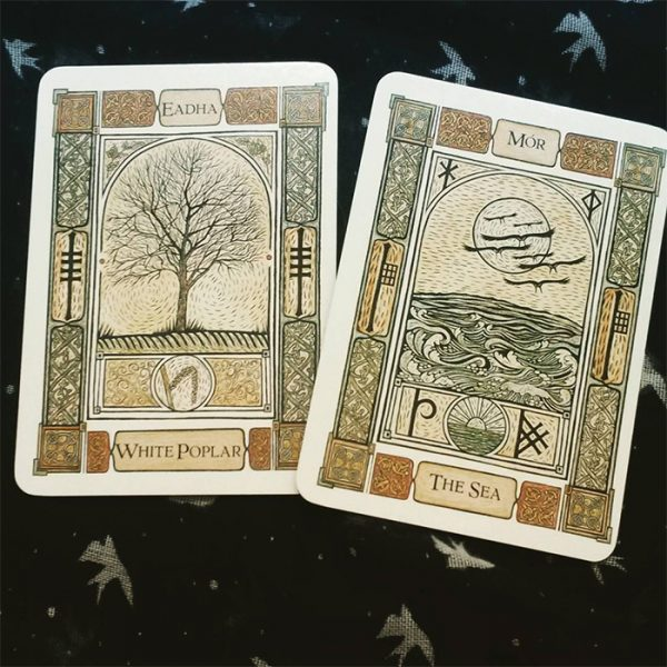Celtic-Tree-Oracle-A-System-of-Divination-6-600×600