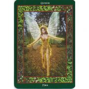Fairy-Ring-Oracle-5