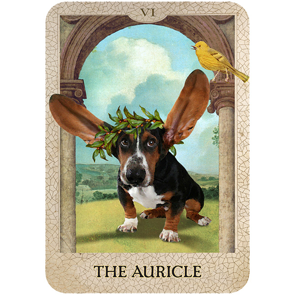 Original-Dog-Tarot-5