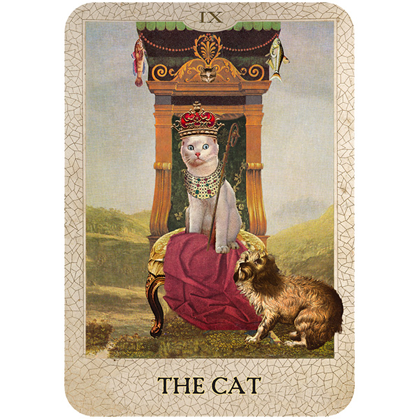 Original-Dog-Tarot-7