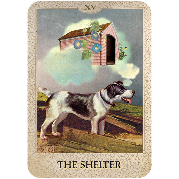 Original-Dog-Tarot-9