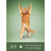 Yoga-Cats-Oracle-7-600×600