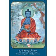 Buddha Wisdom, Shakti Power 7