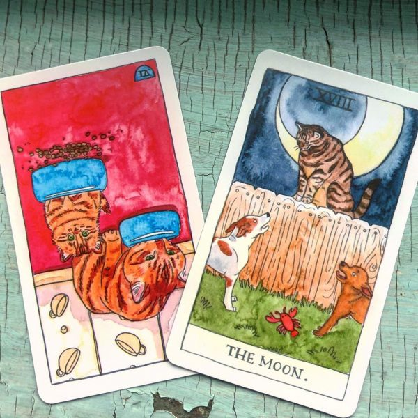 Cat Tarot 6