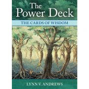 Power Deck The Cards of Wisdom 1