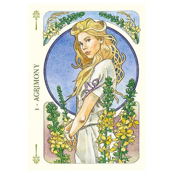 Flower-Oracle-2