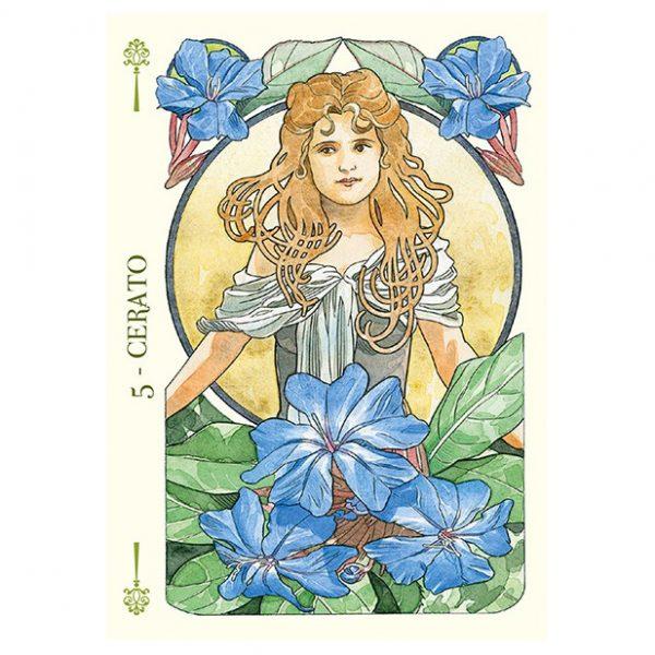 Flower-Oracle-3