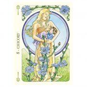 Flower-Oracle-4