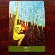 Shamanic-Medicine-Oracle-Cards-10