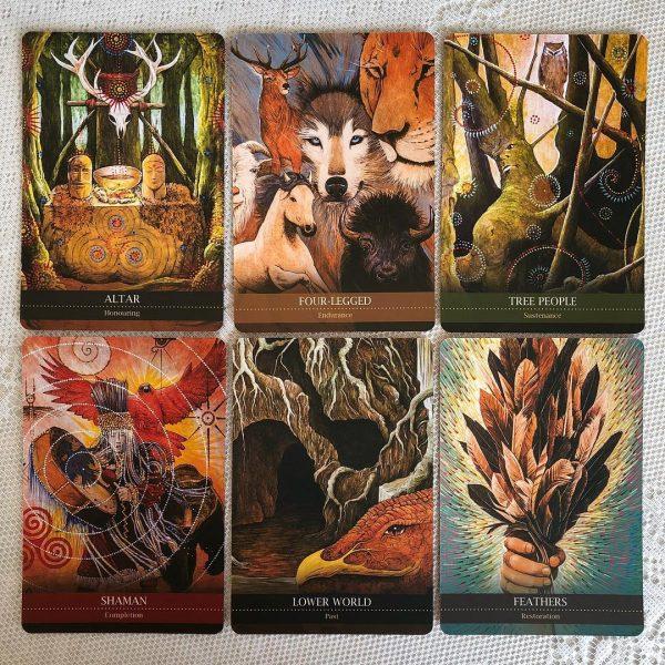 Shamanic-Medicine-Oracle-Cards-13