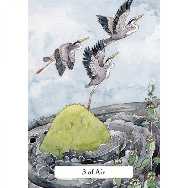 Witches-Wisdom-Tarot-2