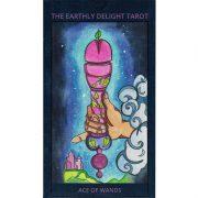 Earthly-Delight-Tarot-1