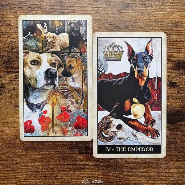 Wise-Dog-Tarot-14