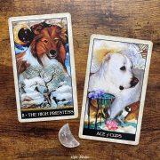 Wise-Dog-Tarot-15
