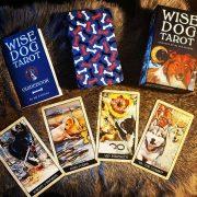 Wise-Dog-Tarot-17