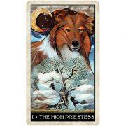 Wise-Dog-Tarot-3