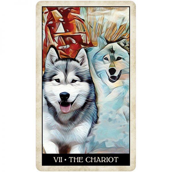 Wise-Dog-Tarot-4
