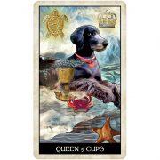 Wise-Dog-Tarot-7